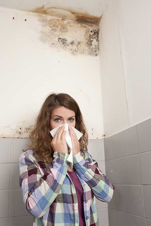 mold remediation allergies